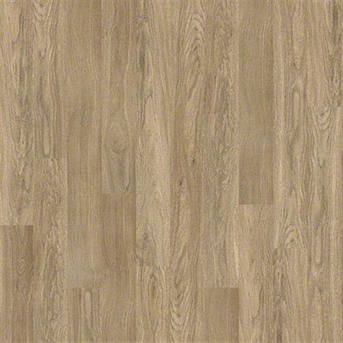 Basque in Thyme - Laminate by Shaw Flooring