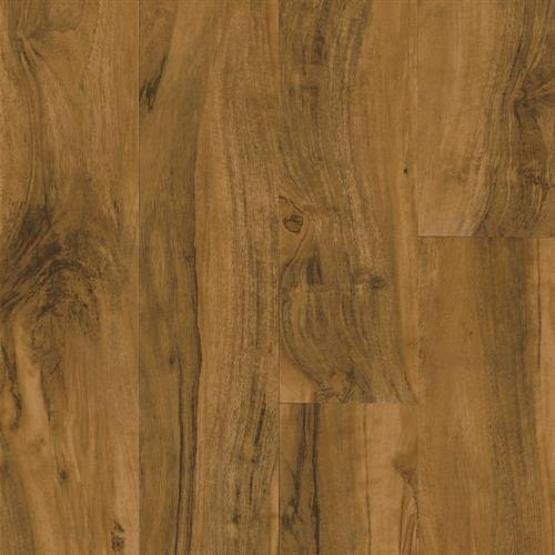 Vivero Best Glue Down in Kingston Walnut   Clove - Vinyl by Armstrong