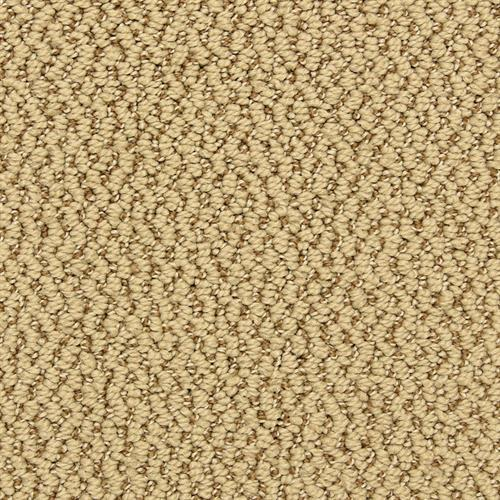 Hideaway in Attitude - Carpet by The Dixie Group
