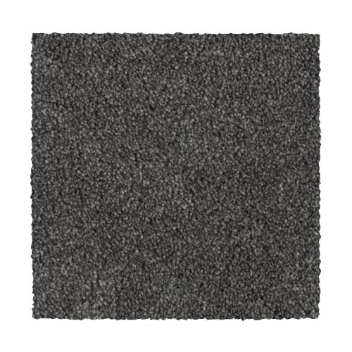 Distinct Beauty III in Slate - Carpet by Mohawk Flooring