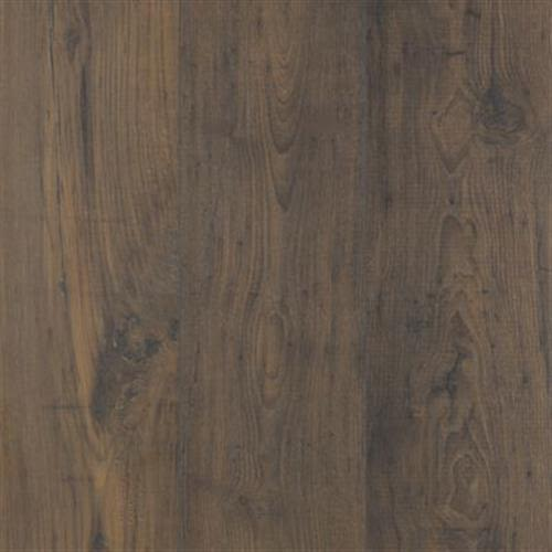 swatch for product variant Earthen Chestnut