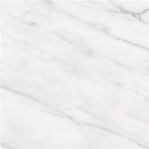 Classic in Carrara 3x6 - Tile by Tesoro