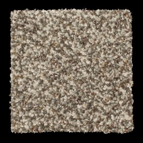 Beale Street in Cary - Carpet by Phenix Flooring