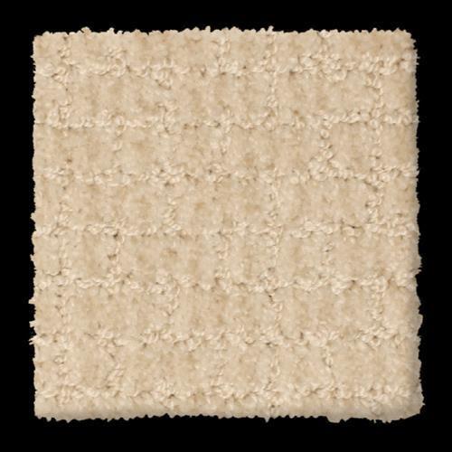Jubilant in Peppy - Carpet by Phenix Flooring