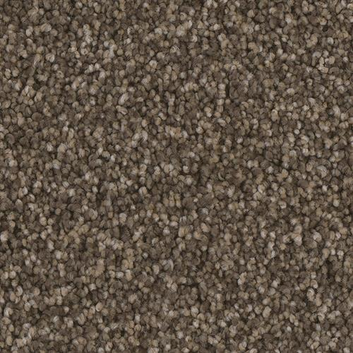 Swatch for Ward flooring product