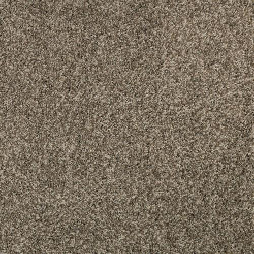 Swatch for Hushed Taupe flooring product