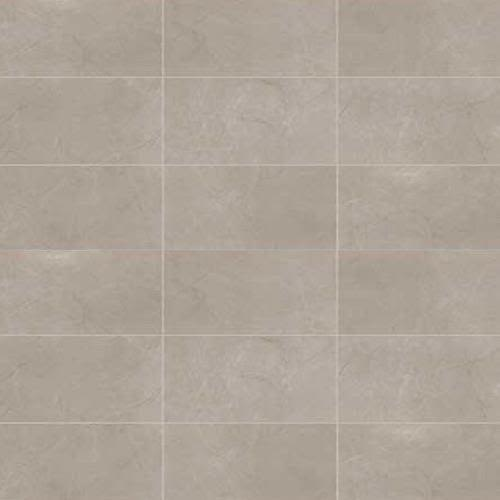Swatch for Coliseum Gray Matte   24x48 flooring product