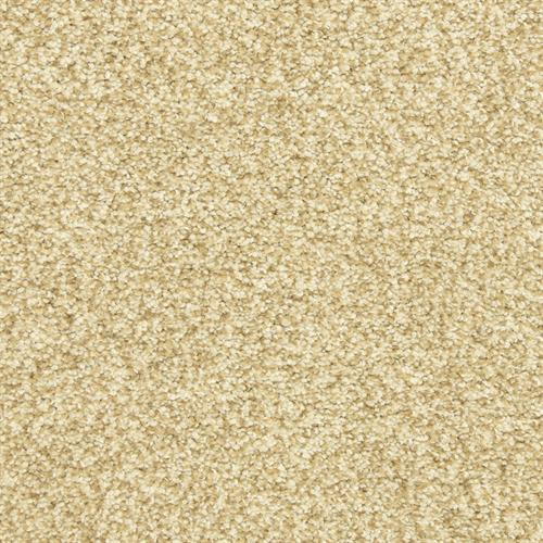 Dawn's Delight in Toffee - Carpet by The Dixie Group