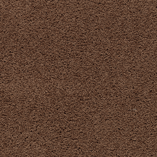 Calming Retreat in Burnished Brown - Carpet by Mohawk Flooring