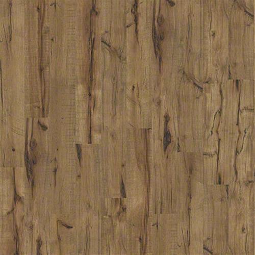 Landmark in Lumberjack Hckry - Laminate by Shaw Flooring