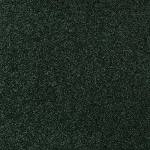 Swatch for Balsam flooring product