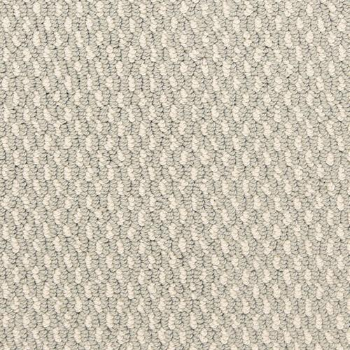 Larson in Sheen - Carpet by The Dixie Group