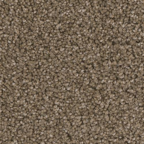 Swatch for Dearborn flooring product