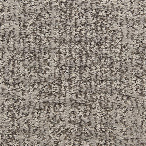 Aspects in Cast Iron - Carpet by The Dixie Group