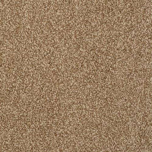 Alluring in Mountain Mist - Carpet by The Dixie Group