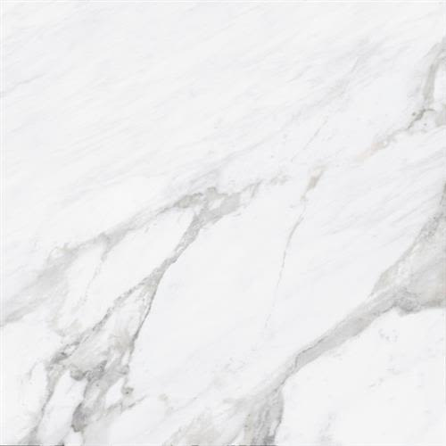 Statuary Collection in White   12x24 Polished - Tile by Chesapeake Flooring