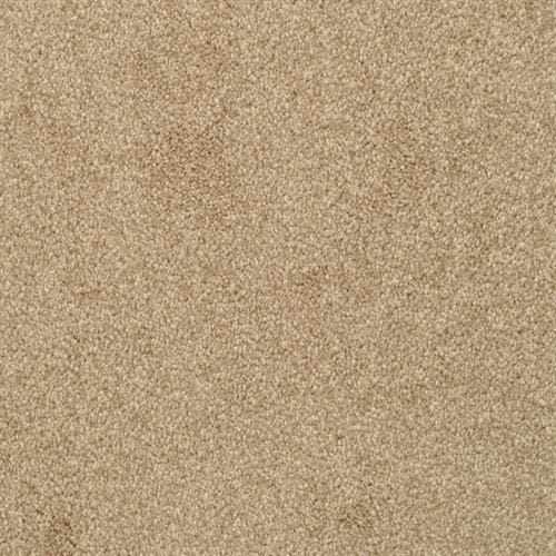 Alluring in Taffy - Carpet by The Dixie Group