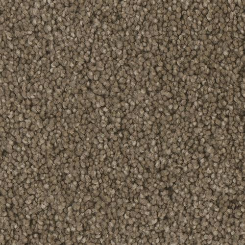 Lake View in Mainland - Carpet by Phenix Flooring