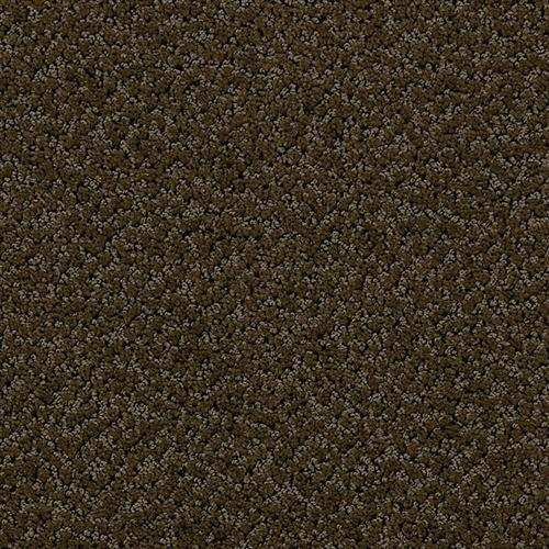 Swatch for Coffee Bean flooring product