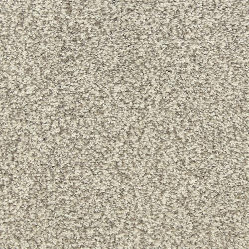 Dawn's Delight in Artic Blast - Carpet by The Dixie Group