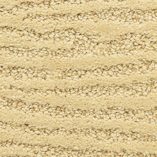 Costa in Wild Honey - Carpet by The Dixie Group