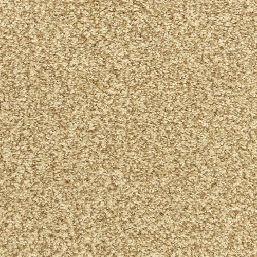 Dawn's Delight in Honeycomb - Carpet by The Dixie Group