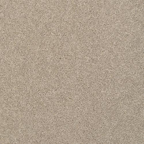 Alluring in Driftwood - Carpet by The Dixie Group