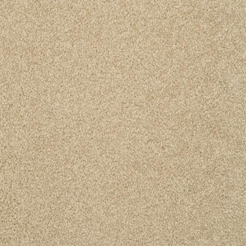 Alluring in Suede - Carpet by The Dixie Group