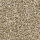 Windsurf II in Sawgrass - Carpet by Engineered Floors