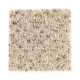 Raider in Oyster Shell - Carpet by Mohawk Flooring
