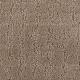 Luxurious Debut in Clay Trail - Carpet by Mohawk Flooring