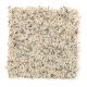 Social Circle in Sand Dollar - Carpet by Mohawk Flooring