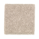 Eternal Allure I in Posh Almond - Carpet by Mohawk Flooring
