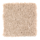 Lifetime Achievement in Safari Tan - Carpet by Mohawk Flooring