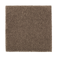 Absolute Elegance II in Nutmeg - Carpet by Mohawk Flooring