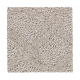 Refined Terrace in Requisite - Carpet by Mohawk Flooring