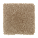 Creative Factor II in Desert Mud - Carpet by Mohawk Flooring