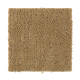 Great Outdoors in Wheat Gold - Carpet by Mohawk Flooring