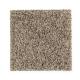 Pleasing Qualities in Neutral Ground - Carpet by Mohawk Flooring