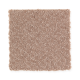Intriguing Design in Pearwood - Carpet by Mohawk Flooring