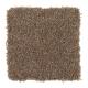 Delightful Cheer in Safari - Carpet by Mohawk Flooring