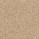 Churchill in Light Musk - Carpet by Mohawk Flooring