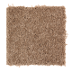 Exotic Fantasy in Rich Maple - Carpet by Mohawk Flooring