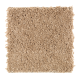 Crowd Favorite in Light Amber - Carpet by Mohawk Flooring