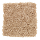 Beautiful Addition in Honey Butter - Carpet by Mohawk Flooring