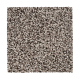 Soft Accolade I in Slate - Carpet by Mohawk Flooring
