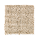 Sheer Genius in Gobi Sands - Carpet by Mohawk Flooring