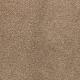 Striking Option in Montego - Carpet by Mohawk Flooring