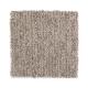 Sheer Innovation in Sumatra Blend - Carpet by Mohawk Flooring