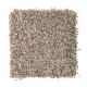 Fresh Start II in Woodland - Carpet by Mohawk Flooring